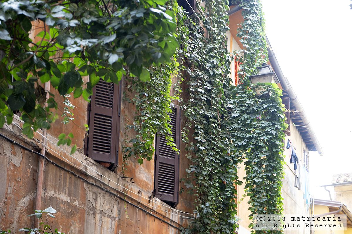 蚤の市もグルメも街歩きも!ローマの下町「トラステヴェレ」の魅力